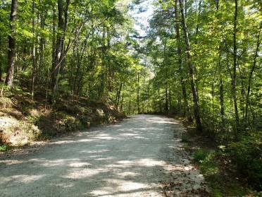 Perrin Cove Road